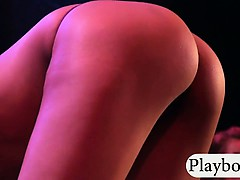 Group of luscious girls stripteasing and dancing in the club